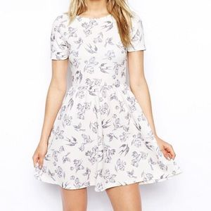 ASOS Skater Dress with Bird Print in Texture